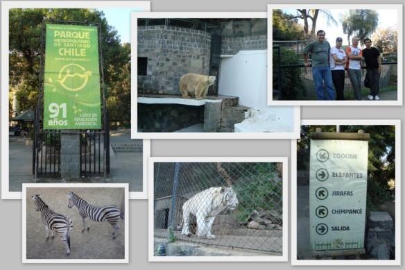 Zoológico de Santiago. (22/05/2009)