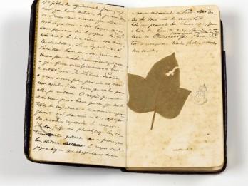 Um dos diários de Dom Pedro II.