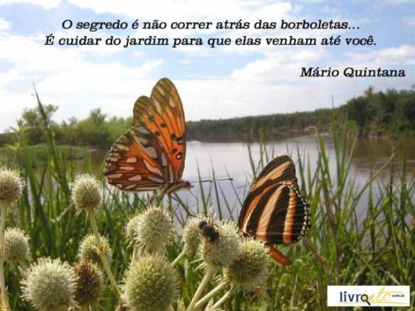 O-segredo-é-não-correr-atrás-das-borboletas...-É-cuidar-do-jardim-para-que-elas-venham-até-você.-Mário-Quintana-640x480